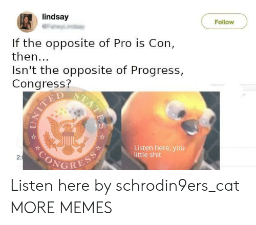 Ted: lindsay  Follow  If the opposite of Pro is Con,  then...  Isn't the opposite of Progress,  Congress?  TED  Listen here, you  little shit  SONGRESS  2:  STATES Listen here by schrodin9ers_cat MORE MEMES