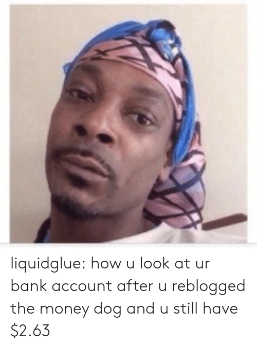 Money, Tumblr, and Bank: liquidglue: how u look at ur bank account after u reblogged the money dog and u still have $2.63
