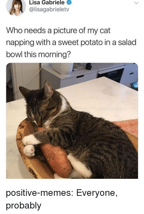 napping: Lisa Gabriele  @lisagabrieletv  Who needs a picture of my cat  napping with a sweet potato in a salad  bowl this morning? positive-memes:  Everyone, probably
