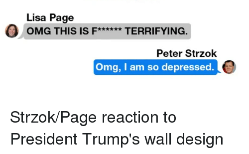 Lisa Page Omg This Is Terrifying Peter Strzok Omg I Am So Depressed