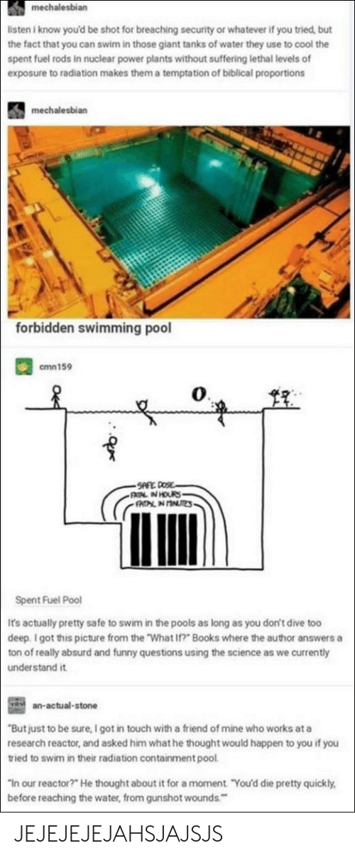 "And Funny: listen i know you'd be shot for breaching security or whatever if you tried, but  the fact that you can swim in those giant tanks of water they use to cool the  spent fuel rods in nuclear power plants without suffering lethal levels of  exposure to radiation makes them a temptation of biblical proportions  mechalesbian  forbidden swimming pool  mn 159  0  Spent Fuel Pool  Ir's actually pretty safe to swim in the pools as long as you don't dive too  deep. I got this picture from the ""What If?"" Books where the author answers a  ton of really absurd and funny questions using the science as we currently  understand it  an-actual-stone  But just to be sure, I got in touch with a friend of mine who works ata  research reactor, and asked him what he thought would happen to you if you  tried to swim in their radiation containment pool  In our reactor?"" He thought about it for a moment ""You'd die pretty quickly.  before reaching the water, from gunshot wounds JEJEJEJEJAHSJAJSJS"