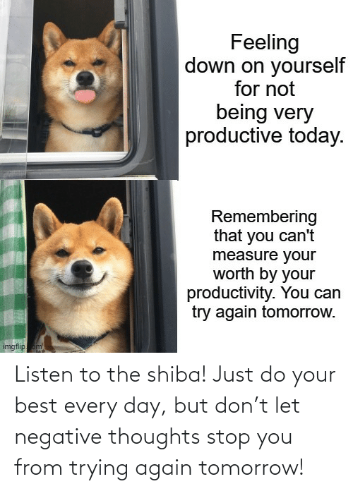 thoughts: Listen to the shiba! Just do your best every day, but don't let negative thoughts stop you from trying again tomorrow!