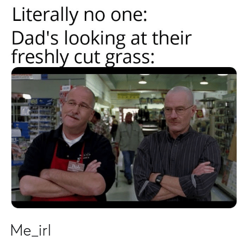 Irl, Me IRL, and Looking: Literally no one:  Dad's looking at their  freshly cut grass:  Bob Me_irl