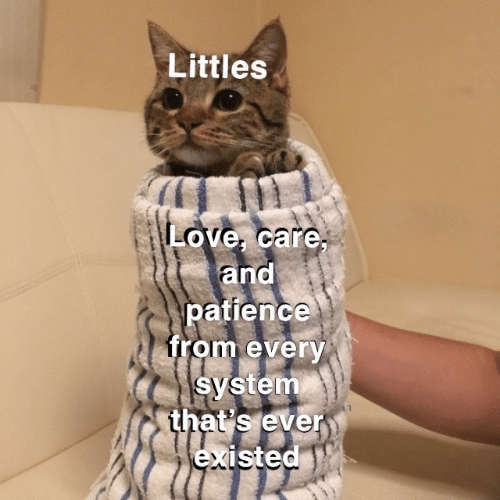 Littles: Littles  Love, care,  and  patience  from every  system  that's ever  existed