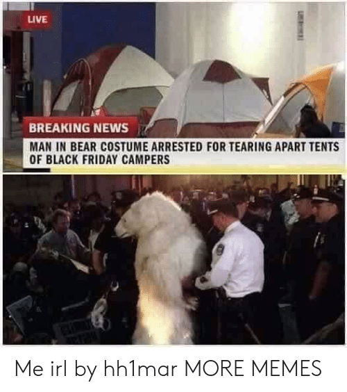 Black Friday, Dank, and Friday: LIVE  BREAKING NEWS  MAN IN BEAR COSTUME ARRESTED FOR TEARING APART TENTS  OF BLACK FRIDAY CAMPERS Me irl by hh1mar MORE MEMES