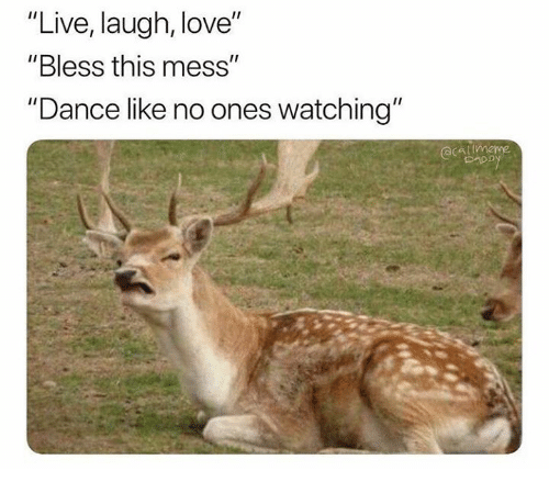 "Love, Live, and Humans of Tumblr: ""Live, laugh, love""  ""Bless this mess""  ""Dance like no ones watching'"""