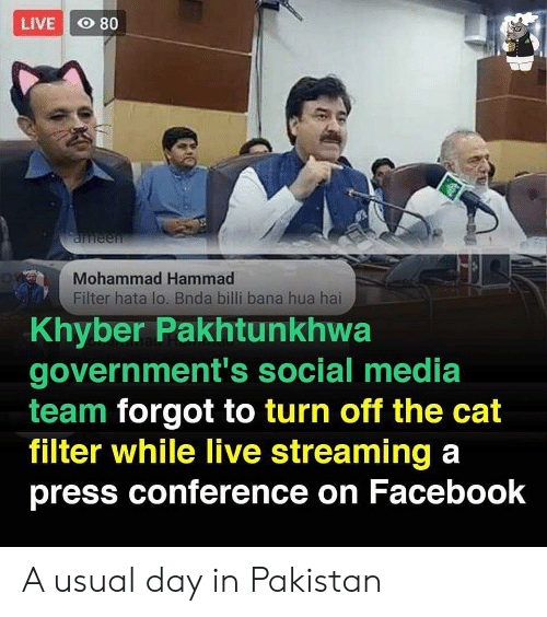 Hua: LIVE O 80  aneen  Mohammad Hammad  Filter hata lo. Bnda billi bana hua hai  Khyber Pakhtunkhwa  government's social media  team forgot to turn off the cat  filter while live streaming a  press conference on Facebook A usual day in Pakistan