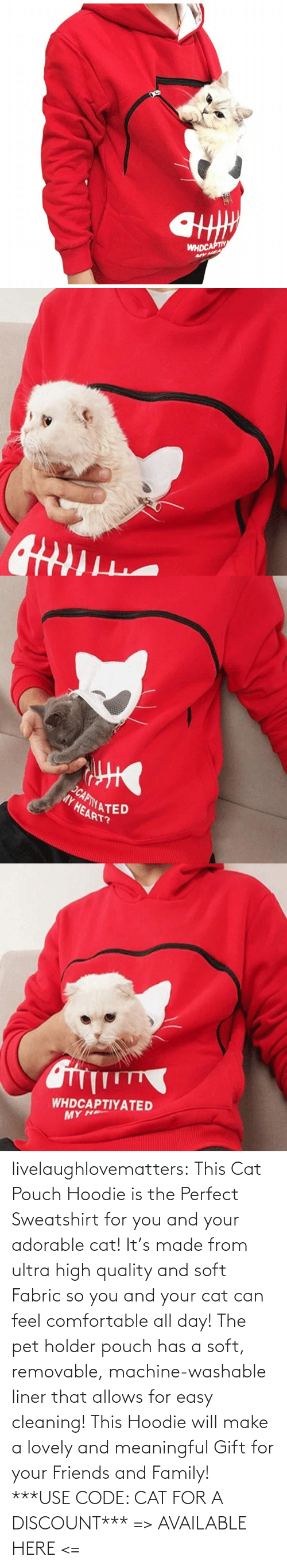 Discount: livelaughlovematters: This Cat Pouch Hoodie is the Perfect Sweatshirt for you and your adorable cat! It's made from ultra high quality and soft Fabric so you and your cat can feel comfortable all day! The pet holder pouch has a soft, removable, machine-washable liner that allows for easy cleaning! This Hoodie will make a lovely and meaningful Gift for your Friends and Family!  ***USE CODE: CAT FOR A DISCOUNT*** => AVAILABLE HERE <=