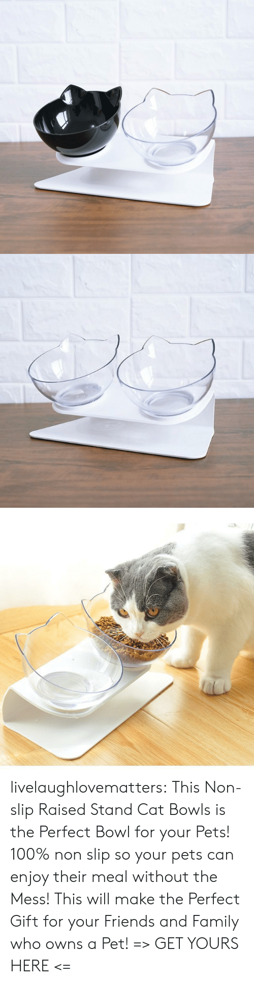 Raised: livelaughlovematters: This Non-slip Raised Stand Cat Bowls is the Perfect Bowl for your Pets! 100% non slip so your pets can enjoy their meal without the Mess! This will make the Perfect Gift for your Friends and Family who owns a Pet! => GET YOURS HERE <=