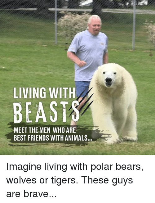 polar bears: LIVING WITH  BEAST  MEET THE MEN WHO ARE  BEST FRIENDS WITH ANIMALS Imagine living with polar bears, wolves or tigers. These guys are brave...