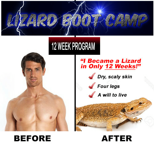 """Live, Camp, and Skin: LIZARD B00T CAMP  12 WEEK PROGRAM  """"Became a Lizard  in Only 12 Weeks!""""  Dry, scaly skin  Four legs  A will to live  BEFORE  AFTER"""