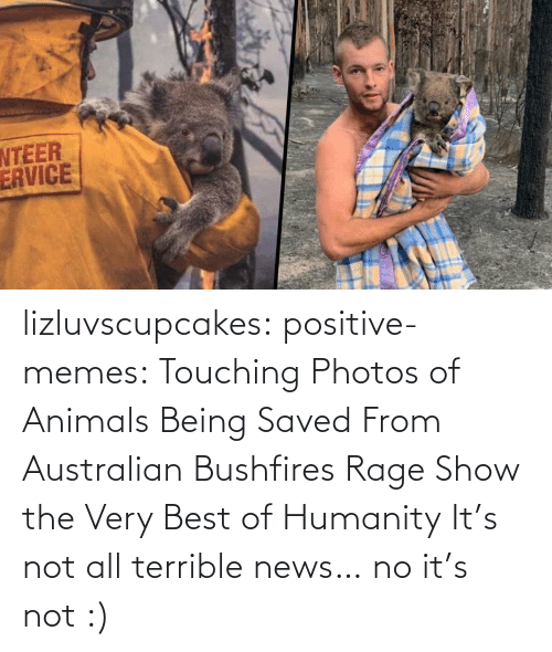 rage: lizluvscupcakes: positive-memes:  Touching Photos of Animals Being Saved From Australian Bushfires Rage Show the Very Best of Humanity   It's not all terrible news…  no it's not :)