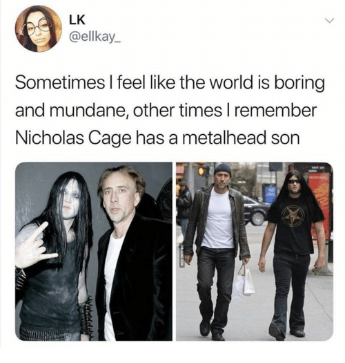 Dank, World, and 🤖: LK  @ellkay_  Sometimes I feel like the world is boring  and mundane, other times I remember  Nicholas Cage has a metalhead son