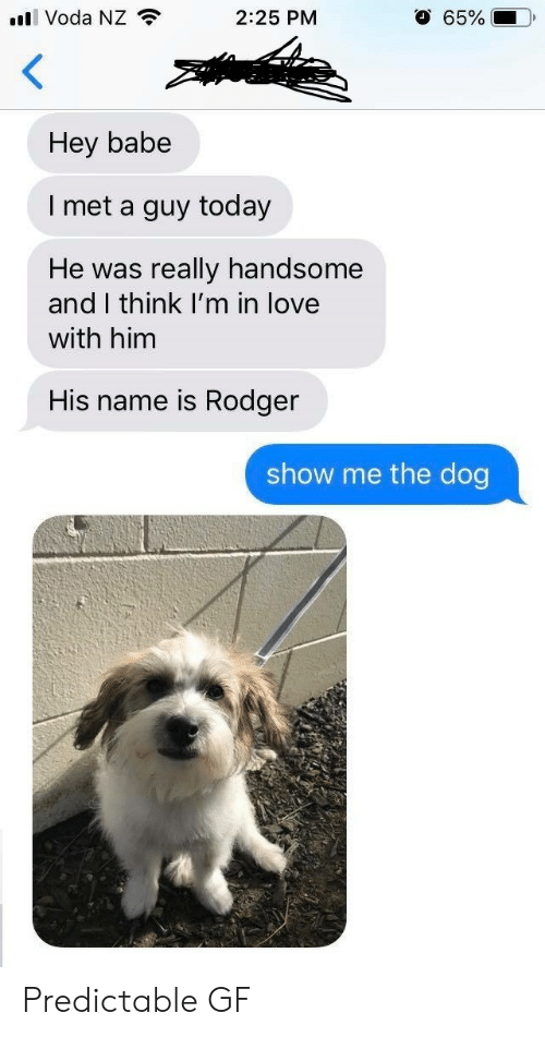 Love, Today, and Dog: ll Voda NZ  2:25 PM  65%  Hey babe  l met a guy today  He was really handsome  and I think I'm in love  with him  His name is Rodger  show me the dog Predictable GF