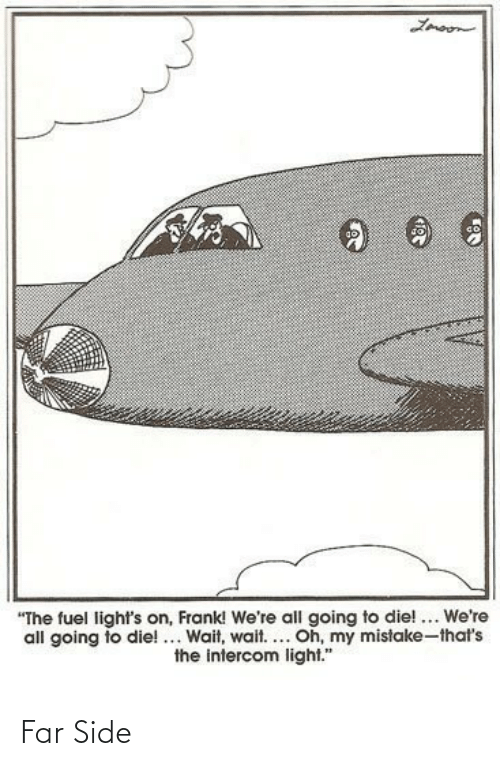 "Light, Fuel, and Lights: Lmoon  ""The fuel light's on, Frank! We're all going to die! ... We're  all going to die!... Wait, wait.... Oh, my mistake-that's  the intercom light."" Far Side"