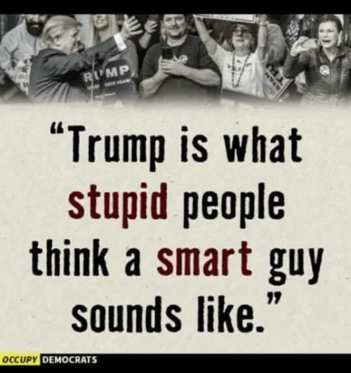 "Memes, Trump, and 🤖: LMP  ""Trump is what  stupid people  think a smart guy  sounds like.  CUPY DEMOCRATS"