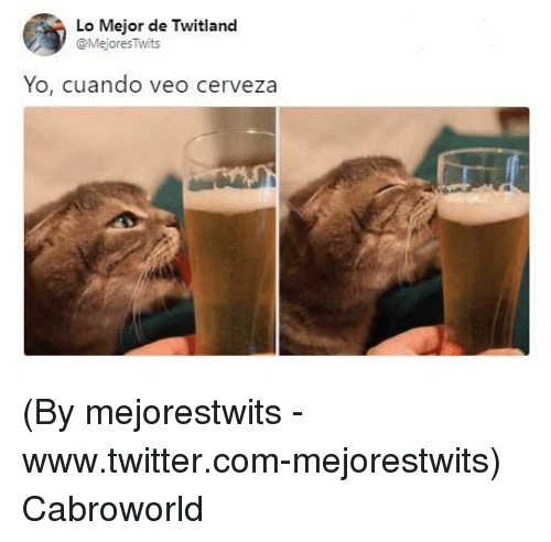 Twitter, Yo, and Com: Lo Mejor de Twitland  @MejoresTwits  Yo, cuando veo cerveza (By mejorestwits - www.twitter.com-mejorestwits) Cabroworld