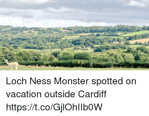 Loch Ness Monster, Memes, and Monster: Loch Ness Monster spotted on vacation outside Cardiff https://t.co/GjlOhIIb0W