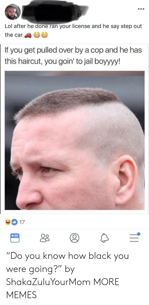 "Dank, Haircut, and Jail: Lol after he done ran your license and he say step out  the car  If you get pulled over by a cop and he has  this haircut, you goin' to jail boyyyy!  17  Oo ""Do you know how black you were going?"" by ShakaZuluYourMom MORE MEMES"