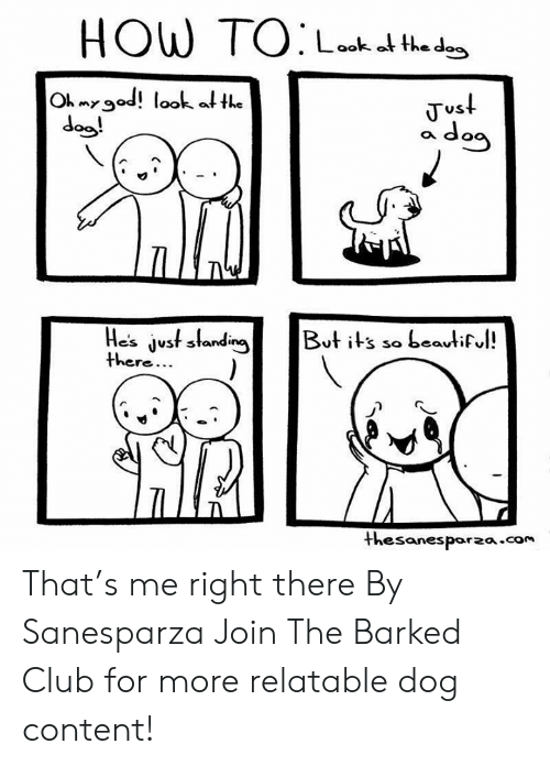 Club, Dank, and Relatable: Loo o the dos  Oh myod! look a the  dog!  NY  Vvs  a da  Hesjst slanin t its so beautif  thesanespor2a.com That's me right there  By Sanesparza  Join The Barked Club for more relatable dog content!