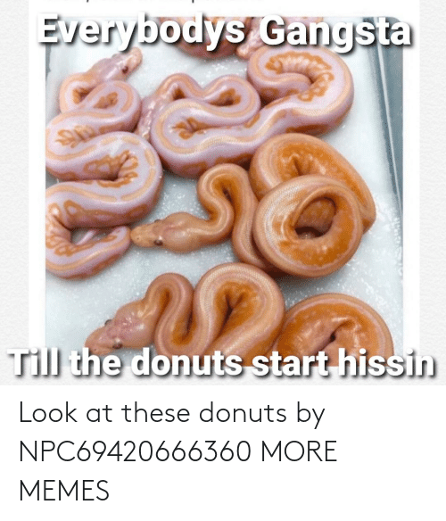 These: Look at these donuts by NPC69420666360 MORE MEMES