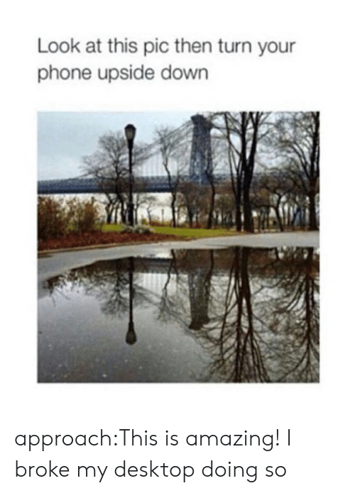 Phone, Tumblr, and Blog: Look at this pic then turn your  phone upside down approach:This is amazing!I broke my desktop doing so