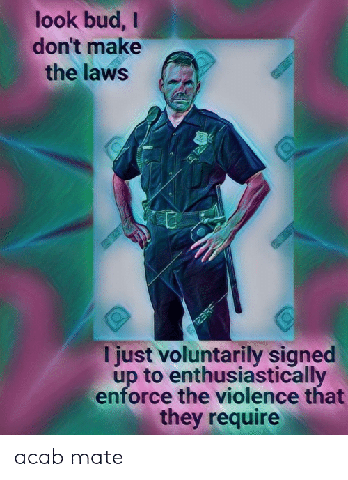 Require: look bud,  don't make  the laws  125  123RE  I just voluntarily signed  up to enthusiastically  enforce the violence that  they require acab mate