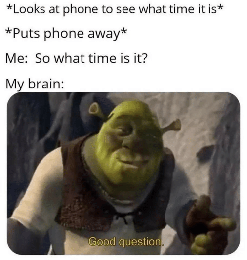 Good Question: *Looks at phone to see what time it is*  *Puts phone away*  Me: So what time is it?  My brain:  Good question.