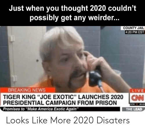 Looks Like: Looks Like More 2020 Disaters