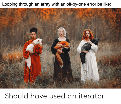Looping: Looping through an array with an off-by-one error be like: Should have used an iterator