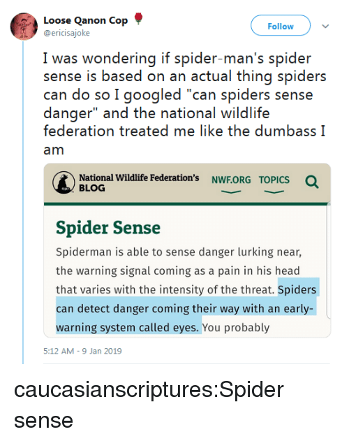 """Head, Lurking, and Spider: Loose Qanon Cop  @ericisajoke  Follow  I was wwondering if spider man's spider  sense is based on an actual thing spiders  can do so I googled """"can spiders sense  danger"""" and the national wildlife  federation treated me like the dumbass I  am  National Wildlife Federation's NWF.ORG  Q  TOPICS  BLOG  Spider Sense  Spiderman is able to sense danger lurking near,  the warning signal coming as a pain in his head  that varies with the intensity of the threat. Spiders  can detect danger coming their way with an early-  warning system called eyes. You probably  5:12 AM-9 Jan 2019 caucasianscriptures:Spider sense"""