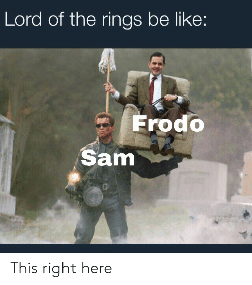 Be Like, Lord of the Rings, and Lord: Lord of the rings be like:  Frodo  Sam This right here