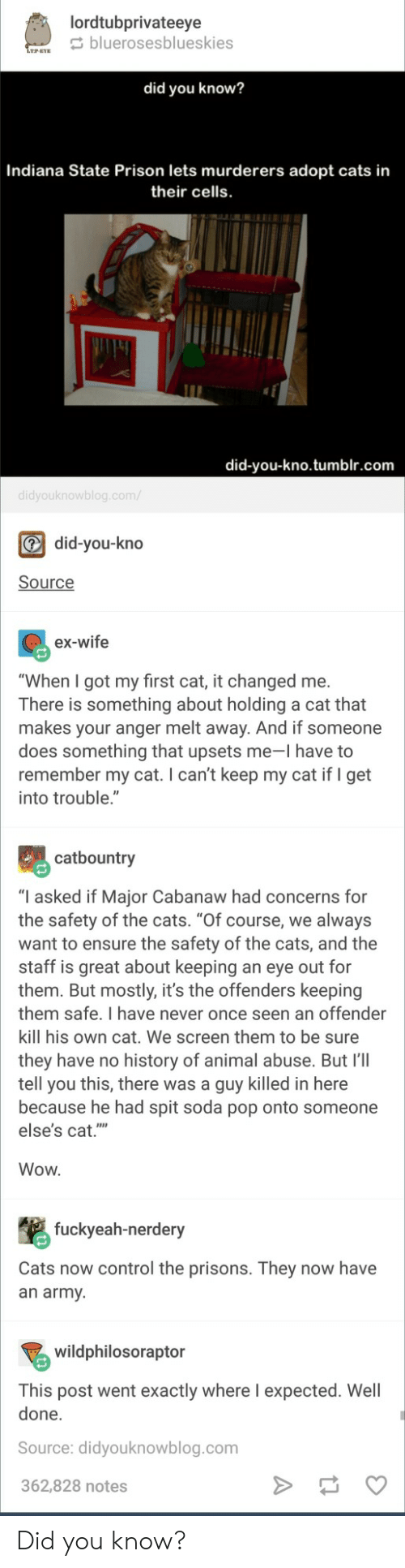 """Cats, Pop, and Soda: lordtubprivateeye  bluerosesblueskies  LTPEYE  did you know?  Indiana State Prison lets murderers adopt cats in  their cells.  did-you-kno.tumblr.com  didyouknowblog.com/  did-you-kno  Source  ex-wife  """"When I got my first cat, it changed me.  There is something about holding a cat that  makes your anger melt away. And if someone  does something that upsets me-l have to  remember my cat. I can't keep my cat if I get  into trouble.""""  catbountry  """"I asked if Major Cabanaw had concerns for  the safety of the cats. """"Of course, we always  want to ensure the safety of the cats, and the  staff is great about keeping an eye out for  them. But mostly, it's the offenders keeping  them safe. I have never once seen an offender  kill his own cat. We screen them to be sure  they have no history of animal abuse. But 'll  tell you this, there was a guy killed in here  because he had spit soda pop onto someone  else's cat.""""'  Wow.  fuckyeah-nerdery  Cats now control the prisons. They now have  an army  wildphilosoraptor  This post went exactly where l expected. Well  done.  Source: didyouknowblog.com  362,828 notes Did you know?"""
