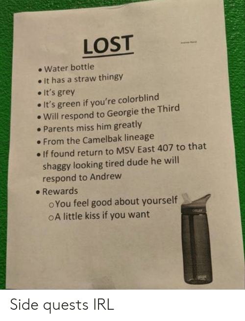 Dude, Parents, and Lost: LOST  Water bottle  It has a straw thingy  It's grey  It's green if you're colorblind  Will respond to Georgie the Third  Parents miss him greatly  From the Camelbak lineage  If found return to MSV East 407 to that  shaggy looking tired dude he will  respond to Andrew  Rewards  oYou feel good about yourself  oA little kiss if you want Side quests IRL