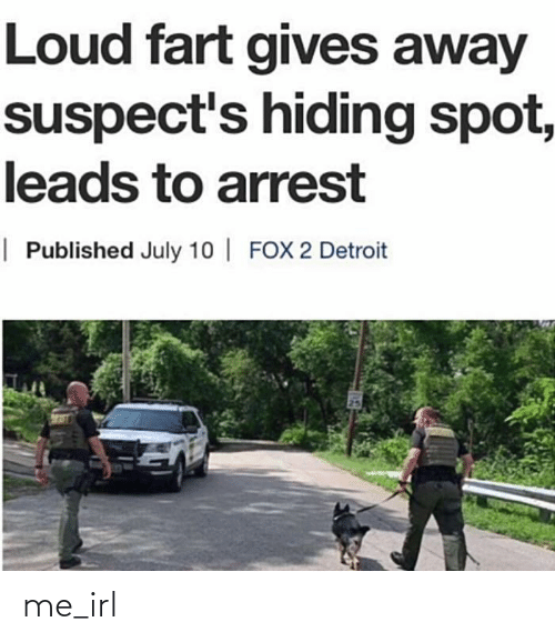 Detroit, Irl, and Me IRL: Loud fart gives away  suspect's hiding spot,  leads to arrest  | Published July 10 | FOX 2 Detroit me_irl