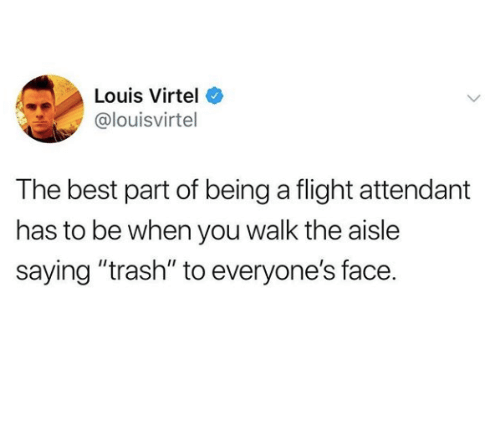 "Trash, Best, and Flight: Louis Virtel  @louisvirtel  The best part of being a flight attendant  has to be when you walk the aisle  saying ""trash"" to everyone's face."