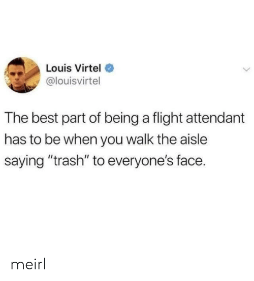 """Trash, Best, and Flight: Louis Virtel  @louisvirtel  The best part of being a flight attendant  has to be when you walk the aisle  saying """"trash"""" to everyone's face. meirl"""