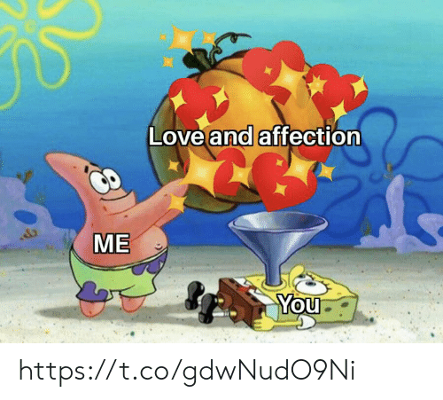 affection: Love and affection  ME  You https://t.co/gdwNudO9Ni