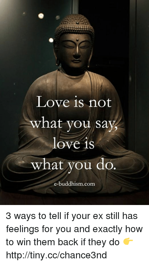 Buddhism: Love is not  what you say,  love is  what you do.  e-buddhism com 3 ways to tell if your ex still has feelings for you and exactly how to win them back if they do 👉 http://tiny.cc/chance3nd