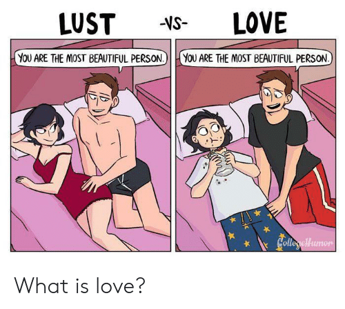 What Is Love: LOVE  LUST  -VS-  YOU ARE THE MOST BEAUTIFUL PERSON.)  YOU ARE THE MOST BEAUTIFUL PERSON  Colleryellumon What is love?
