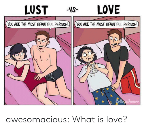 What Is Love: LOVE  LUST  -VS-  YOU ARE THE MOST BEAUTIFUL PERSON.)  YOU ARE THE MOST BEAUTIFUL PERSON  Colleryellumon awesomacious:  What is love?