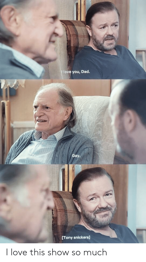 snickers: love you, Dad  Gay.  Tony snickers] I love this show so much