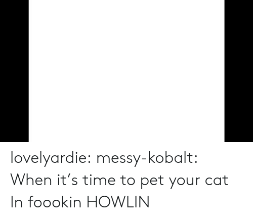 Tumblr, Blog, and Time: lovelyardie:  messy-kobalt: When it's time to pet your cat  In foookin HOWLIN