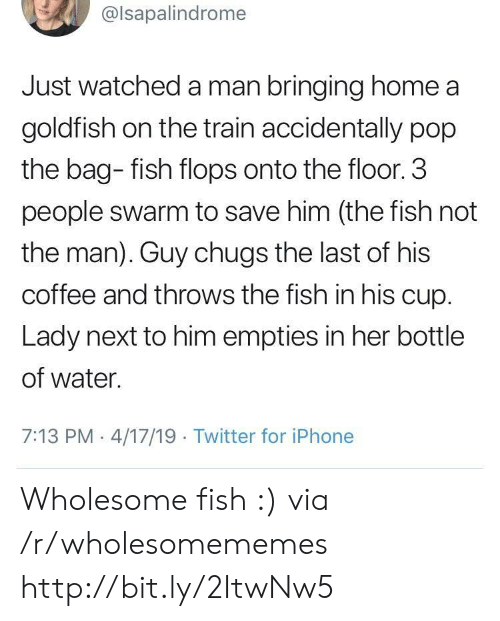 Goldfish, Iphone, and Pop: @lsapalindrome  Just watched a man bringing home a  goldfish on the train accidentally pop  the bag- fish flops onto the floor. 3  people swarm to save him (the fish not  the man). Guy chugs the last of his  coffee and throws the fish in his cup.  Lady next to him empties in her bottle  of water.  7:13 PM 4/17/19 Twitter for iPhone Wholesome fish :) via /r/wholesomememes http://bit.ly/2ItwNw5