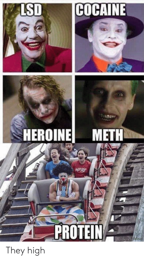 Protein: LSD  COCAINE  HEROINE METH  PROTEIN They high