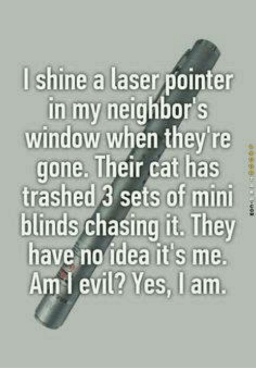 blinds: lshine a laser pointer  in my neighbor s  window when they're  gone. Their cat has  trashed 3 sets of min  blinds chasing it. They  have no idea it's me.  Aml evil? Yes, I am