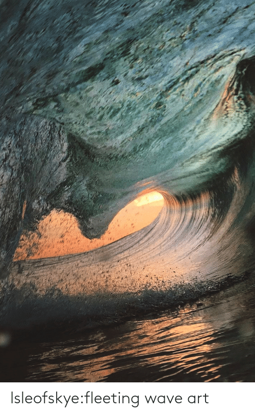 Instagram, Taken, and Tumblr: lsleofskye:fleeting wave art