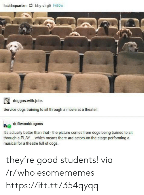 theater: lucidaquarian bby-virgo Follow  doggos-with-jobs  Service dogs training to sit through a movie at a theater.  driftwooddragons  It's actually better than that - the picture comes from dogs being trained to sit  through a PLAY... which means there are actors on the stage performing a  musical for a theatre full of dogs. they're good students! via /r/wholesomememes https://ift.tt/354qyqq