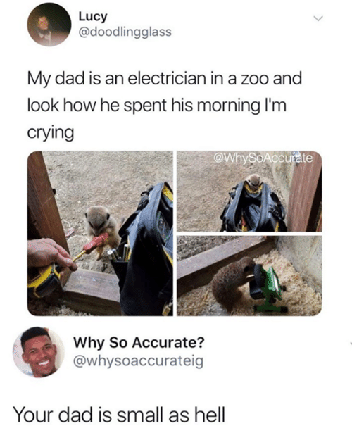 Crying, Dad, and Funny: Lucy  @doodlingglass  My dad is an electrician in a zoo and  look how he spent his morning I'm  crying  @WbySoAccurate  Why So Accurate?  @whysoaccurateig  Your dad is small as hell