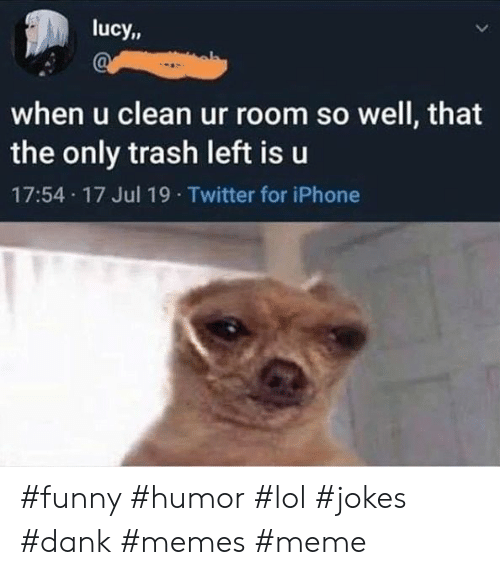Dank, Funny, and Iphone: lucy,  when u clean ur room so well, that  the only trash left is u  17:54 17 Jul 19 Twitter for iPhone #funny #humor #lol #jokes #dank #memes #meme